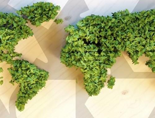 Você sabe o que é EcoDesenvolvimento?