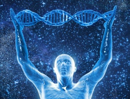 Experiência da extração de DNA humano