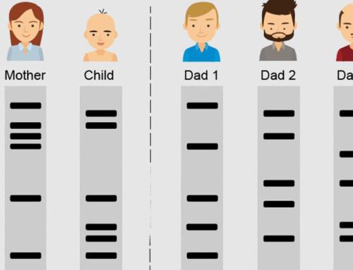 Como compreender o resultado do exame de DNA